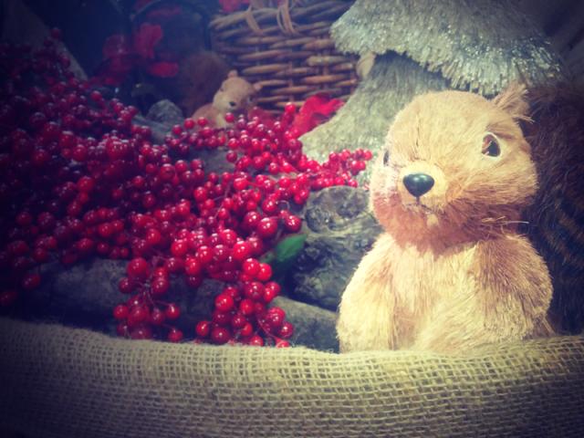 scoiattoli-cestino-natale