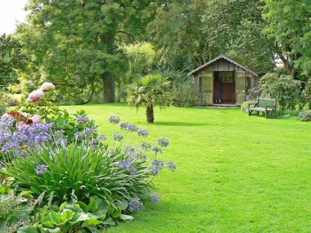 erba-giardino_NG4