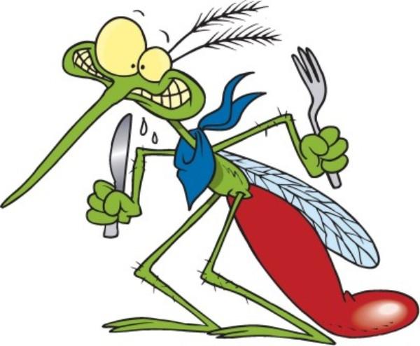 puntura-zanzare