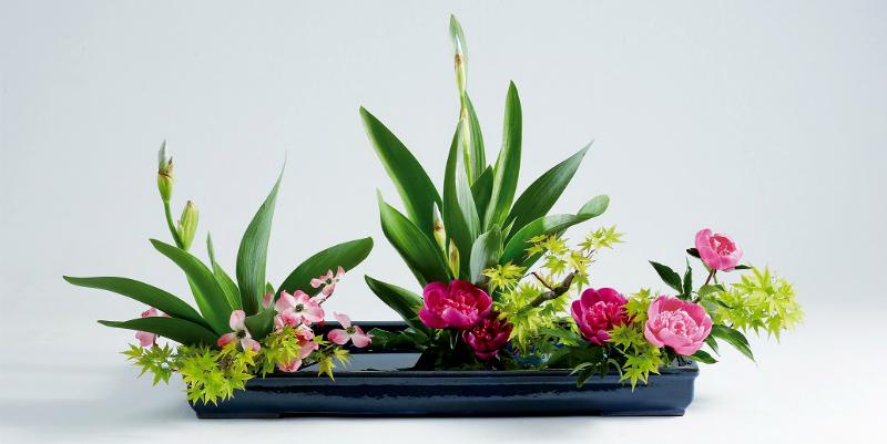 Arredare con i fiori creando idee for Arredare con fiori finti
