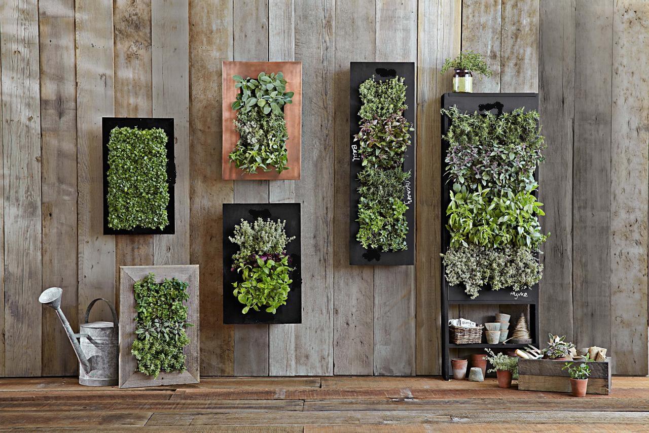 Giardini Verticali Fai Da Te giardini verticali sulle pareti di casa – creando idee